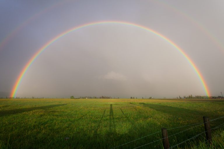 Rainbow over a field.